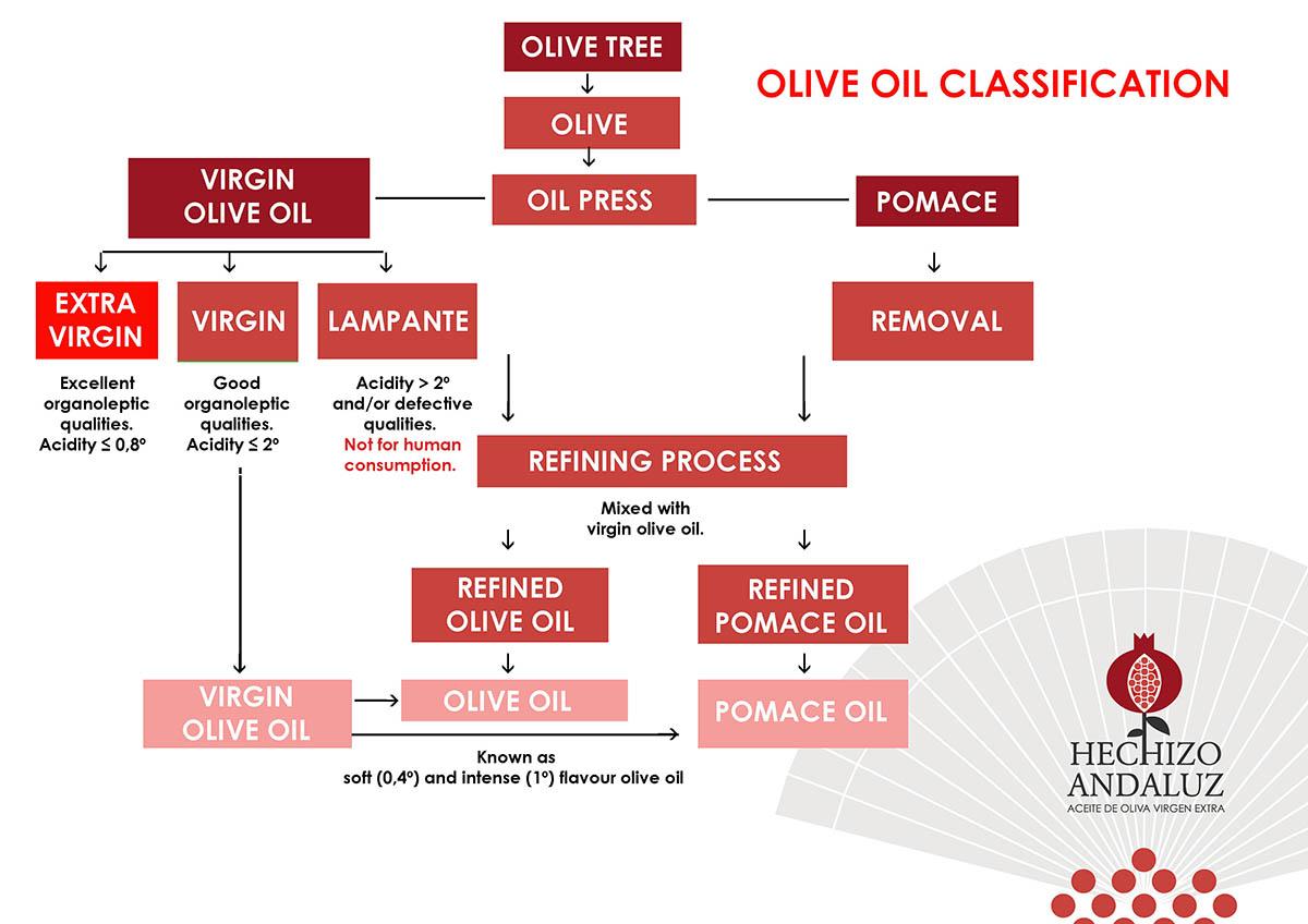 clasificacion-aceites